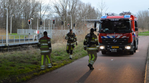 Rietkraag in brand aan Clauspad in Almere